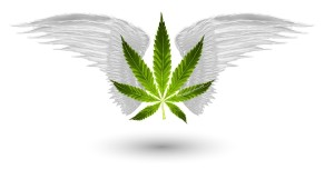 Marijuana Games Home Page Image