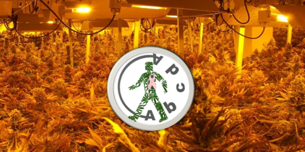 Abcda Cannabis Club Review Feature Image