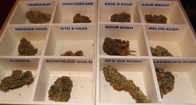 How to get marijuana in Barcelona Spain - the weed tray at Betty Boop