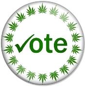 Marijuana Addiction Survey 175