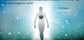 Carl Sagan Marijuana Quote