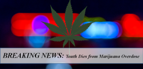 Have you seen these headlines - marijuana overdose