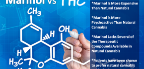 Marinol vs THC 600x350