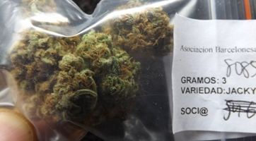 Marijuana Strain Review - Jacky White in the bag