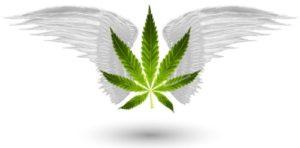 Marijuana Games Directory Page Image