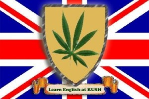 Free Spanish Lessons at the Kush Cannabis Club in Barcelona