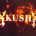 Barcelona Cannabis Club Review: Kush