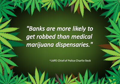 LAPD Chief of Police Quote about Marijuana Robberies