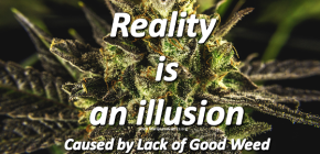 Marijuana Joke - Reality is an Illusion 602x468