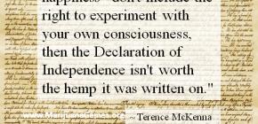 Marijuana Quote - Terence McKenna