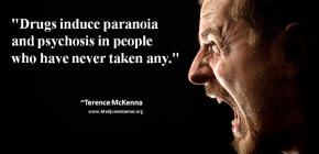 Marijuana Quote by Terence McKenna #2 600x400