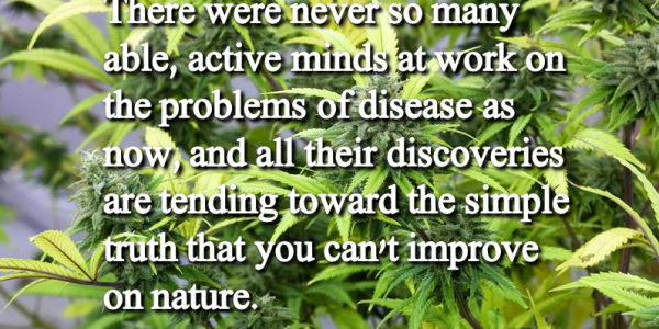 Quote about Marijuana by Thomas Edison