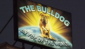 Feature Image for Amsterdam Coffeeshop Review of Bulldog in Leidsplein