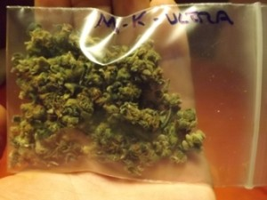 MK Ultra Strain Review - in the bag