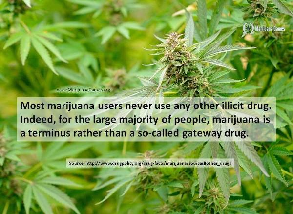 Marijuana Fact about Gateway by Drug Policy org