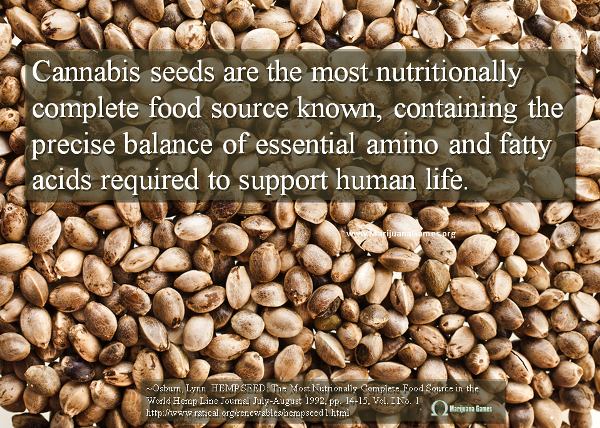 Marijuana Games Image - Cannabis Seeds Food Source 600x428