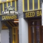 Amsterdam Seed Bank Review: ASG