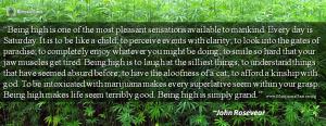 Marijuana Quote by John Rosevear