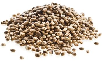 Pile of Sensi Seeds on offer