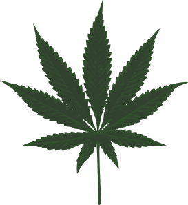 Marijuana Facts pot leaf image