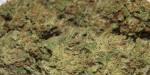 Marijuana Strain Review: Deep Chunk