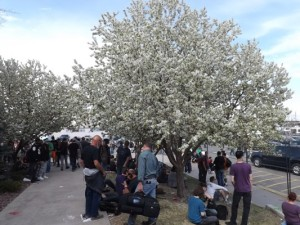 The outside smoking area at the Cannabis Cup