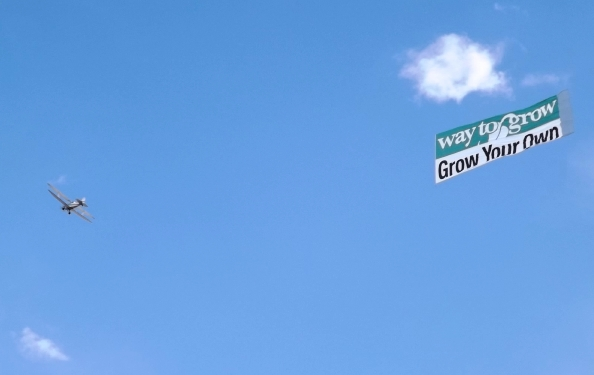 Sky Ads at the Cannabis Cup