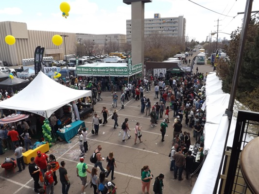 High in the Crows Loft at the Cannabis Cup