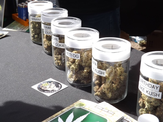 Marijuana for sale at the cannabis cup