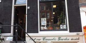 Feature image for Cannabis College in Amsterdam Article