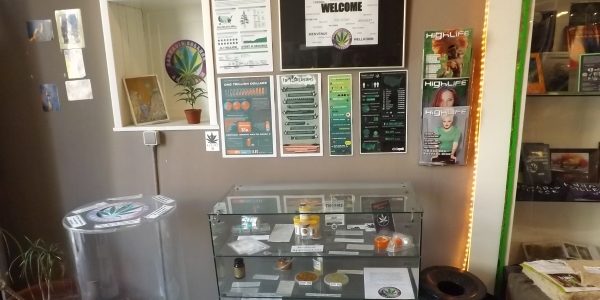 Materials at the entrance to the Cannabis College