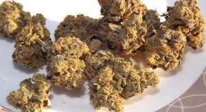 Huckleberry marijuana strain on a plate