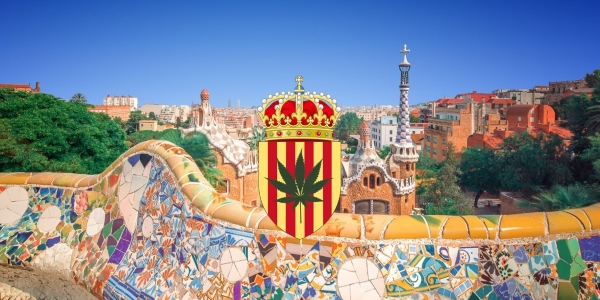 Feature image Cannabis Clubsin Barcelona Not a Loophole
