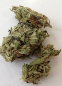 Vertical image of Somango weed
