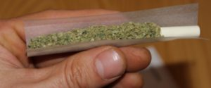 Rolling the Hudson weed joint