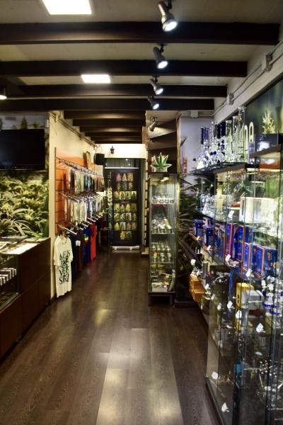Interior Barcelona Seed Center