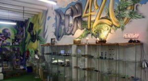 Interior of BCN 420 Head Shop Barcelona