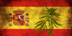 The Future of Spain's Cannabis Social Clubs