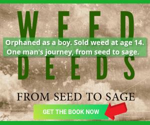WEED-DEEDS-Main-title-300X250-Sidebar-ad
