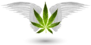 Marijuana Games Home Page Image