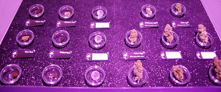 Marijuana selection at Blue Magic BCN