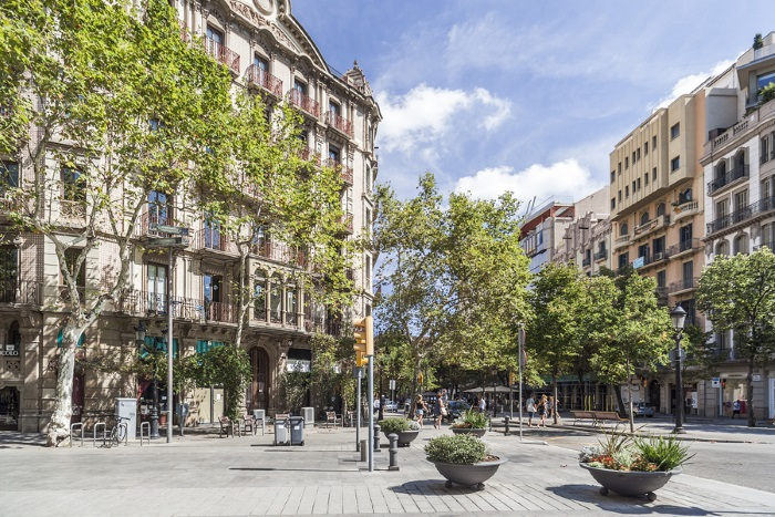 The-Barcelona-Cannabis-Club-in-Question-Eixample-Area