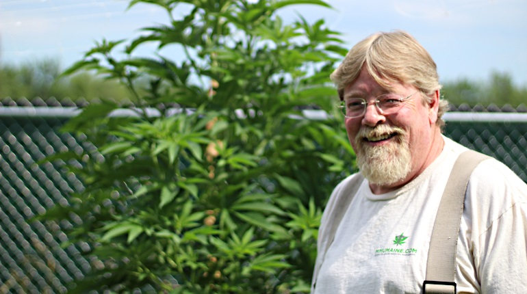 Maine Marijuana Caregiver: King Bishop