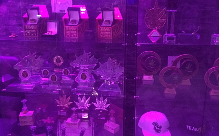 Cannabis Trophy Awards won by The Plug BCN