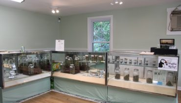 Feature image for Maine Dispensary Review of 1 Mill in Belfast