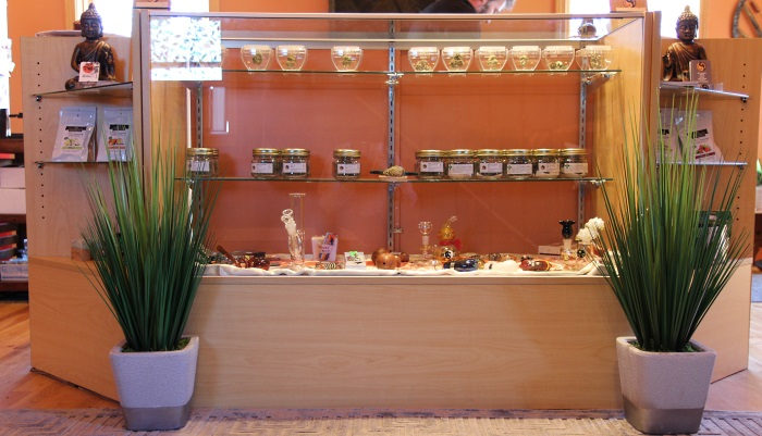 Front counter with plants at Sensi Sensei Maine Marijuana DIspensary