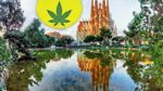 Tourists and Marijuana in Barcelona