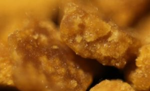 Barcelona Cannabis Types Includes Wax and Shatter