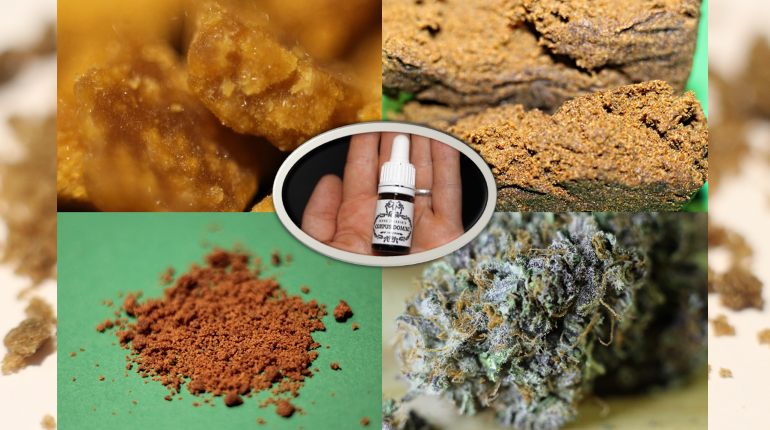 Feature image for Barcelona Marijuana Types Cost Article