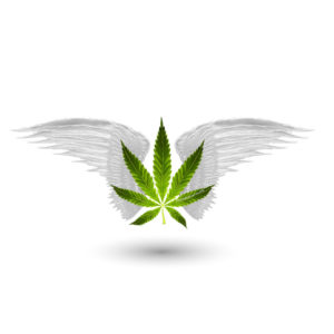 MarijuanaGames Leaf and Wings Logo